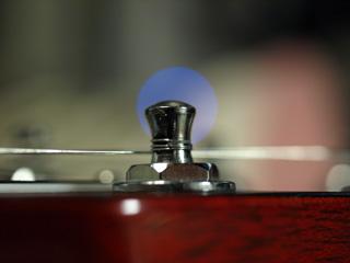 弦の巻き - まぁ、成功?